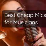 13 Best Cheap Microphones for Musicians